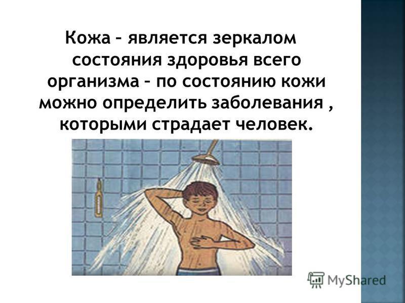 Кожа – является зеркалом состояния здоровья всего организма – по состоянию кожи можно определить заболевания, которыми страдает человек.