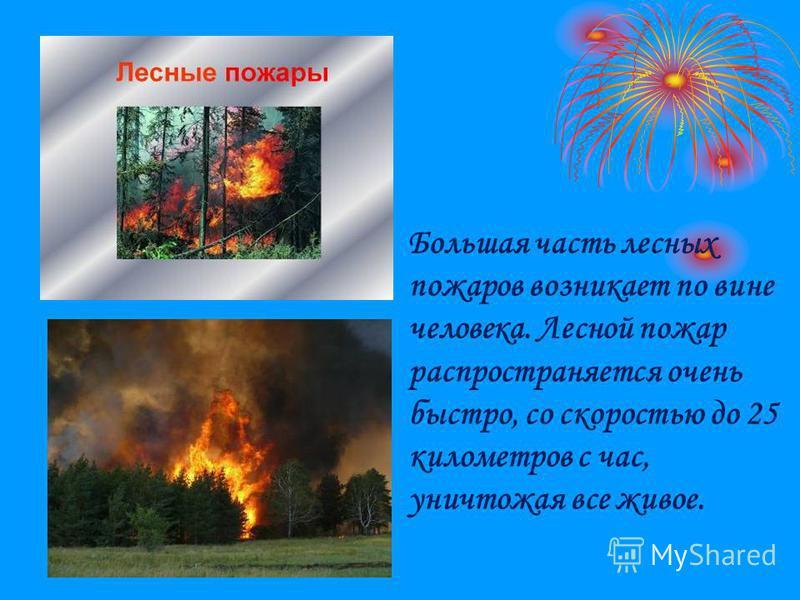 Большая часть лесных пожаров возникает по вине человека. Лесной пожар распространяется очень быстро, со скоростью до 25 километров с час, уничтожая все живое.