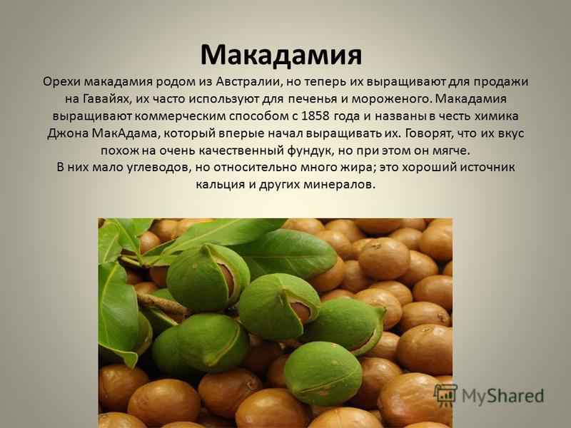 Макадамия Орехи макадамия родом из Австралии, но теперь их выращивают для продажи на Гавайях, их часто используют для печенья и мороженого. Макадамия выращивают коммерческим способом с 1858 года и названы в честь химика Джона Мак Адама, который вперв