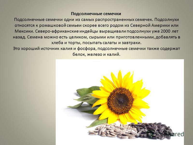 Польза сырых семечек подсолнуха