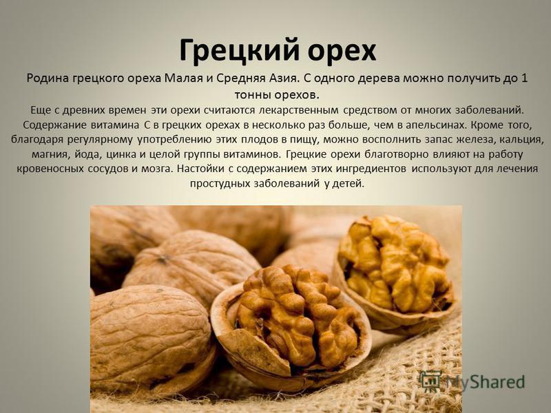 Грецкий орех Родина грецкого ореха Малая и Средняя Азия. С одного дерева можно получить до 1 тонны орехов. Еще с древних времен эти орехи считаются лекарственным средством от многих заболеваний. Содержание витамина С в грецких орехах в несколько раз