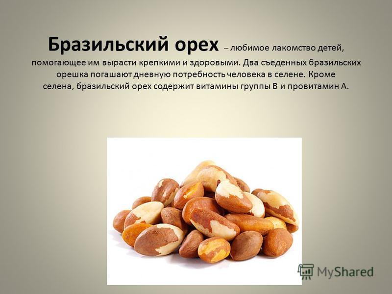 Бразильский орех – любимое лакомство детей, помогающее им вырасти крепкими и здоровыми. Два съеденных бразильских орешка погашают дневную потребность человека в селене. Кроме селена, бразильский орех содержит витамины группы В и провитамин А.