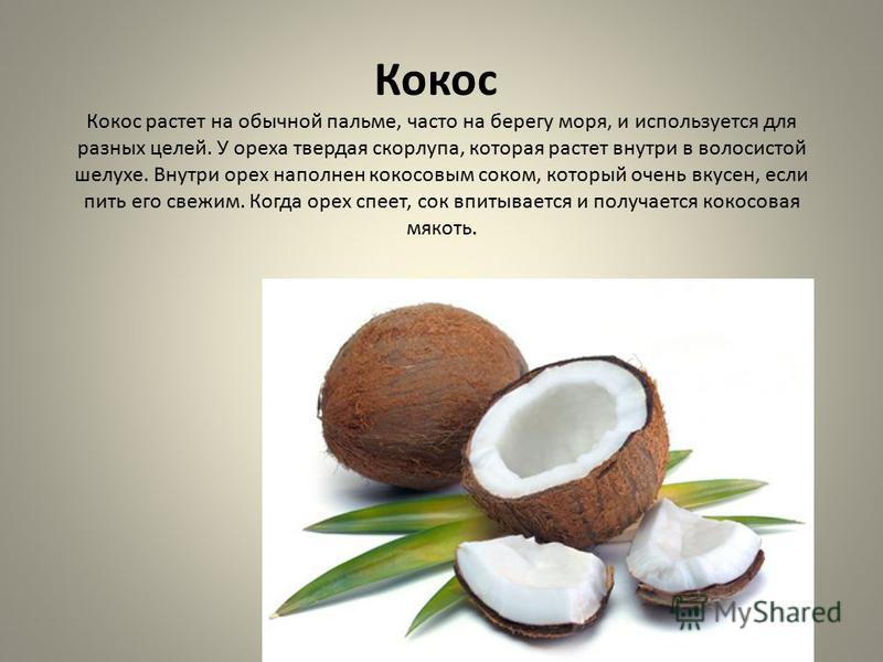 Кокос Кокос растет на обычной пальме, часто на берегу моря, и используется для разных целей. У ореха твердая скорлупа, которая растет внутри в волосистой шелухе. Внутри орех наполнен кокосовым соком, который очень вкусен, если пить его свежим. Когда