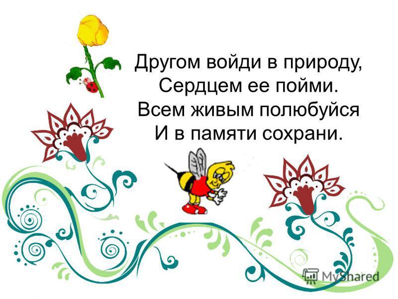 Другом войди в природу, Сердцем ее пойми. Всем живым полюбуйся И в памяти сохрани.