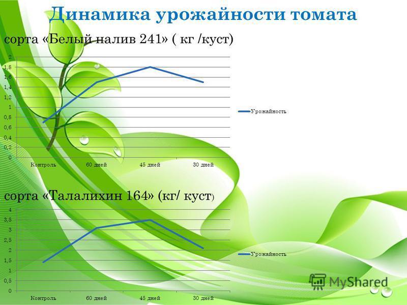 Динамика урожайности томата сорта «Белый налив 241» ( кг /куст) сорта «Талалихин 164» (кг/ куст )