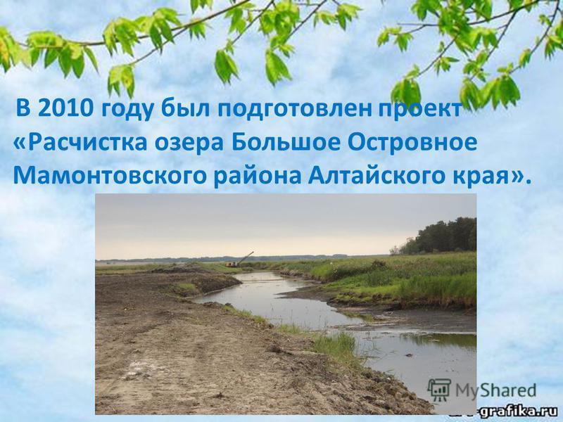 В 2010 году был подготовлен проект «Расчистка озера Большое Островное Мамонтовского района Алтайского края».