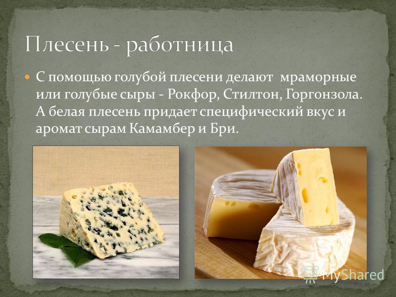 С помощью голубой плесени делают мраморные или голубые сыры - Рокфор, Стилтон, Горгонзола. А белая плесень придает специфический вкус и аромат сырам Камамбер и Бри.