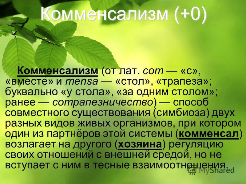 Комменсализм (+0) Комменсализм (от лат. com «с», «вместе» и mensa «стол», «трапеза»; буквально «у стола», «за одним столом»; ранее сотрапезничество) способ совместного существования (симбиоза) двух разных видов живых организмов, при котором один из п