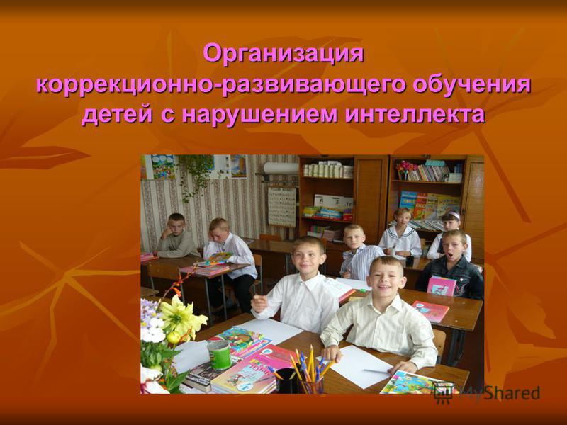 Организация коррекционно-развивающего обучения детей с нарушением интеллекта