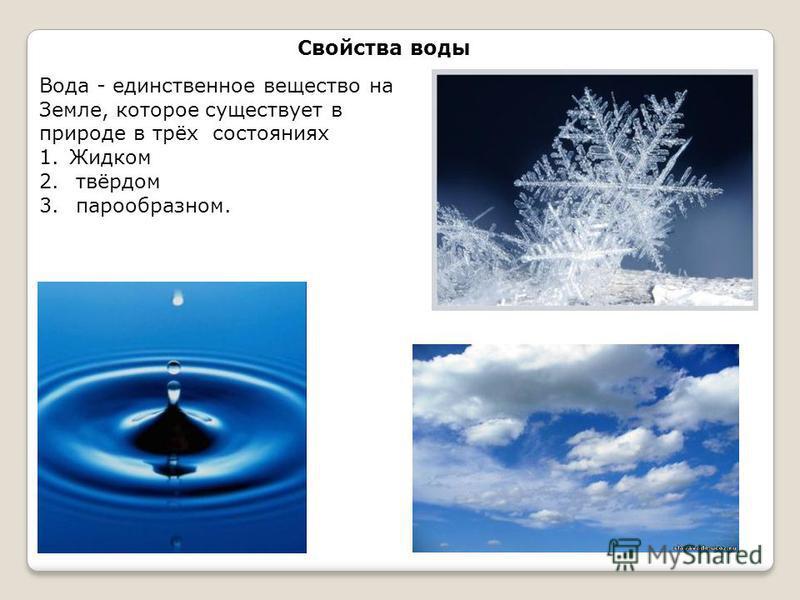 Свойства воды Вода - единственное вещество на Земле, которое существует в природе в трёх состояниях 1. Жидком 2. твёрдом 3. парообразном.