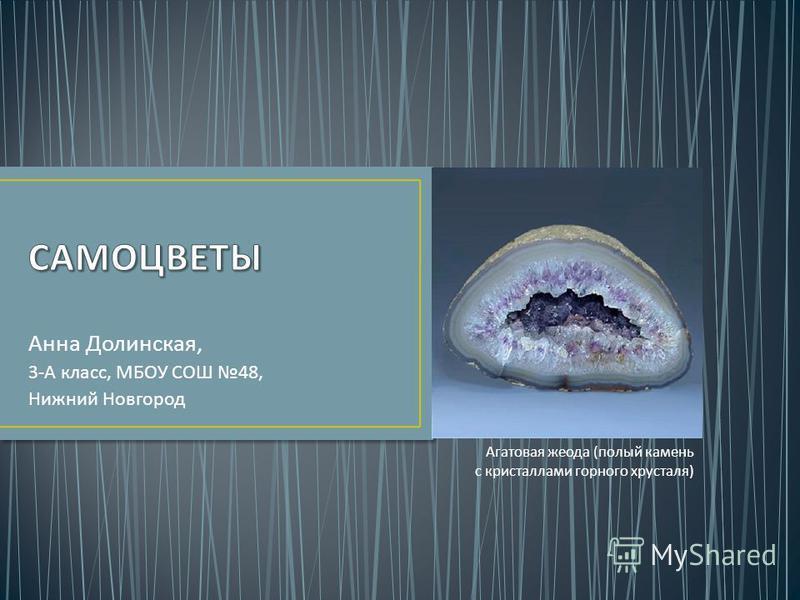 Анна Долинская, 3- А класс, МБОУ СОШ 48, Нижний Новгород Агатовая жеода ( полый камень с кристаллами горного хрусталя )