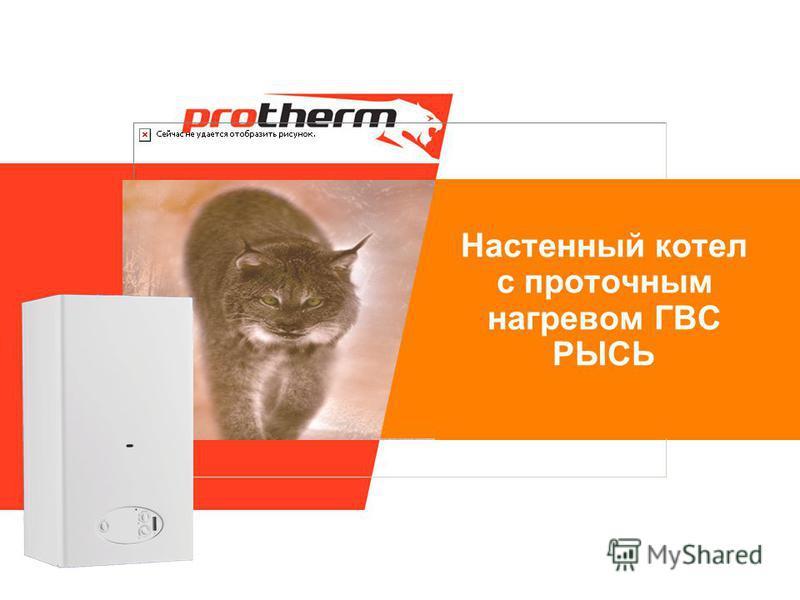 Настенный котел с проточным нагревом ГВС РЫСЬ