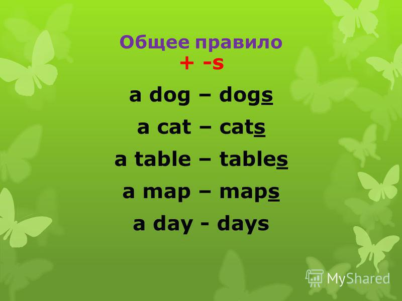 Общее правило + -s a dog – dogs a cat – cats a table – tables a map – maps a day - days