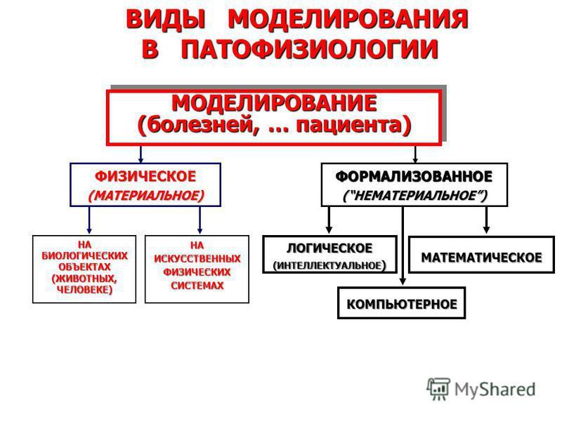 ВИДЫ МОДЕЛИРОВАНИЯ ВИДЫ МОДЕЛИРОВАНИЯ В ПАТОФИЗИОЛОГИИ В ПАТОФИЗИОЛОГИИ ФИЗИЧЕСКОЕ(МАТЕРИАЛЬНОЕ)ФОРМАЛИЗОВАННОЕ (НЕМАТЕРИАЛЬНОЕ) НАБИОЛОГИЧЕСКИХОБЪЕКТАХ (ЖИВОТНЫХ, ЧЕЛОВЕКЕ) ЛОГИЧЕСКОЕ (ИНТЕЛЛЕКТУАЛЬНОЕ ) НА ИСКУССТВЕННЫХ ФИЗИЧЕСКИХ СИСТЕМАХ МАТЕМАТИ