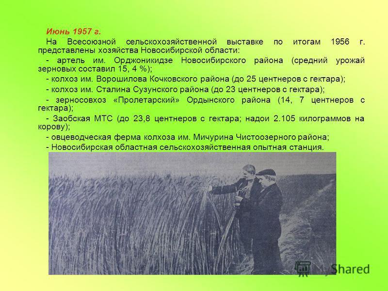 Июнь 1957 г. На Всесоюзной сельскохозяйственной выставке по итогам 1956 г. представлены хозяйства Новосибирской области: - артель им. Орджоникидзе Новосибирского района (средний урожай зерновых составил 15, 4 %); - колхоз им. Ворошилова Кочковского р