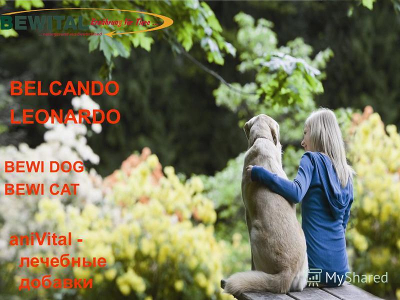 BELCANDO LEONARDO BEWI DOG BEWI CAT aniVital - лечебные добавки