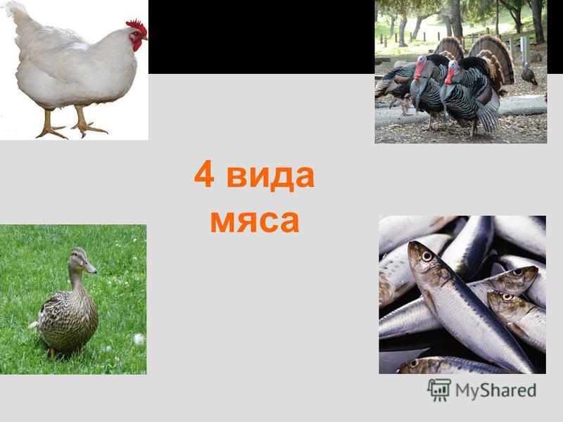 4 вида мяса
