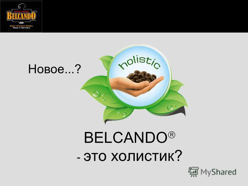 BELCANDO - это холистик? Новое...?