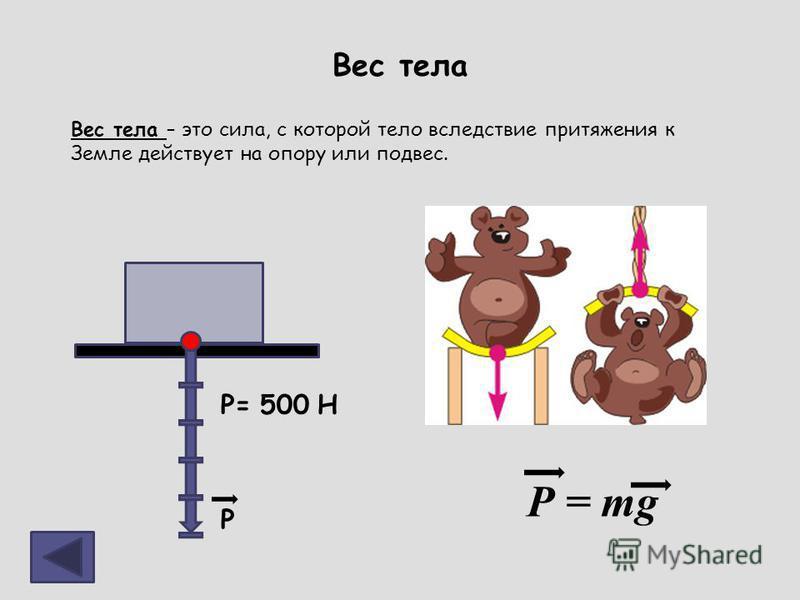 Вес тела Вес тела – это сила, с которой тело вследствие притяжения к Земле действует на опору или подвес. Р = mg P= 500 H Р