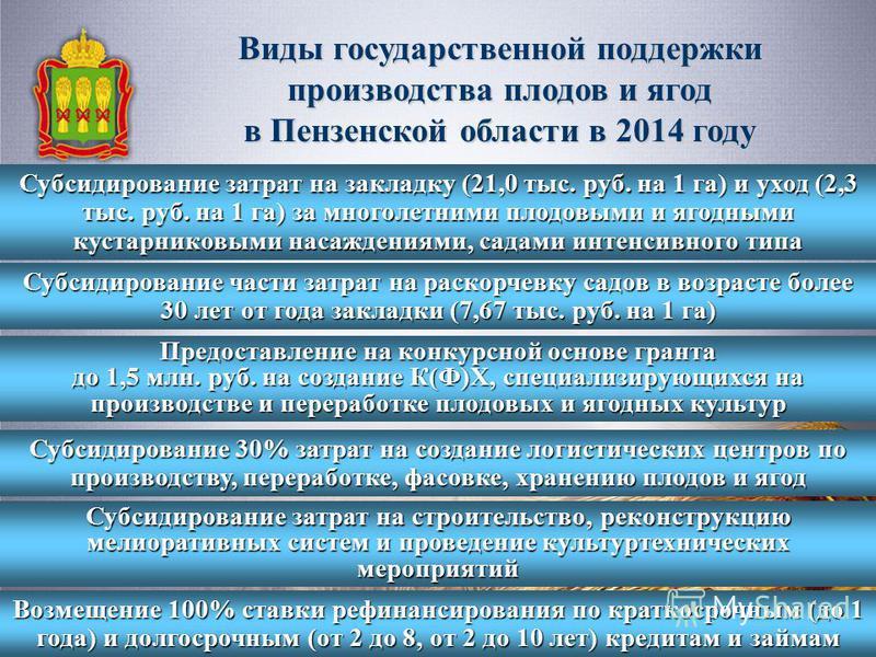 Виды государственной поддержки производства плодов и ягод в Пензенской области в 2014 году Субсидирование затрат на закладку (21,0 тыс. руб. на 1 га) и уход (2,3 тыс. руб. на 1 га) за многолетними плодовыми и ягодными кустарниковыми насаждениями, сад