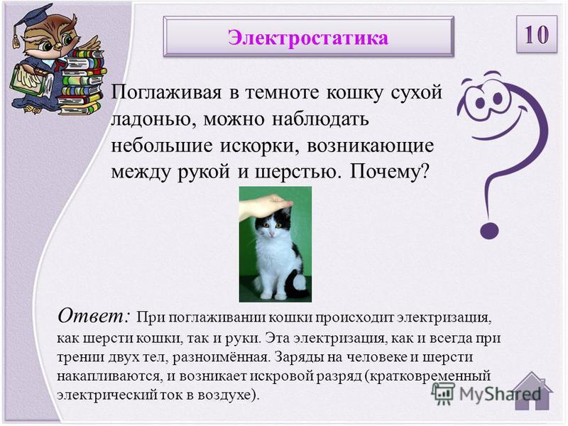 Ответ: При поглаживании кошки происходит электризация, как шерсти кошки, так и руки. Эта электризация, как и всегда при трении двух тел, разноимённая. Заряды на человеке и шерсти накапливаются, и возникает искровой разряд (кратковременный электрическ