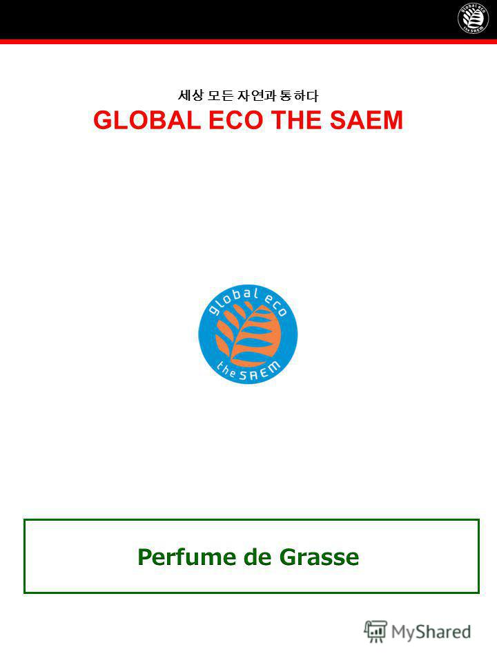 GLOBAL ECO THE SAEM