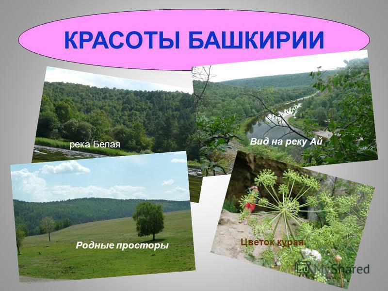 Национальный герой – Салават Юлаев Батыр и батыр очка! А это я… Еще гожусь в невесты?))) В моем сердце живет Башкирия!
