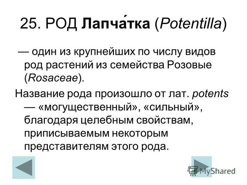 25. РОД Лапча́тка (Potentilla) один из крупнейших по числу видов род растений из семейства Розовые (Rosaceae). Название рода произошло от лат. potents «могущественный», «сильный», благодаря целебным свойствам, приписываемым некоторым представителям э