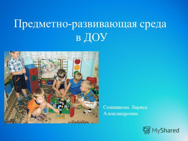 Предметно-развивающая среда в ДОУ Сошникова Лариса Александровна