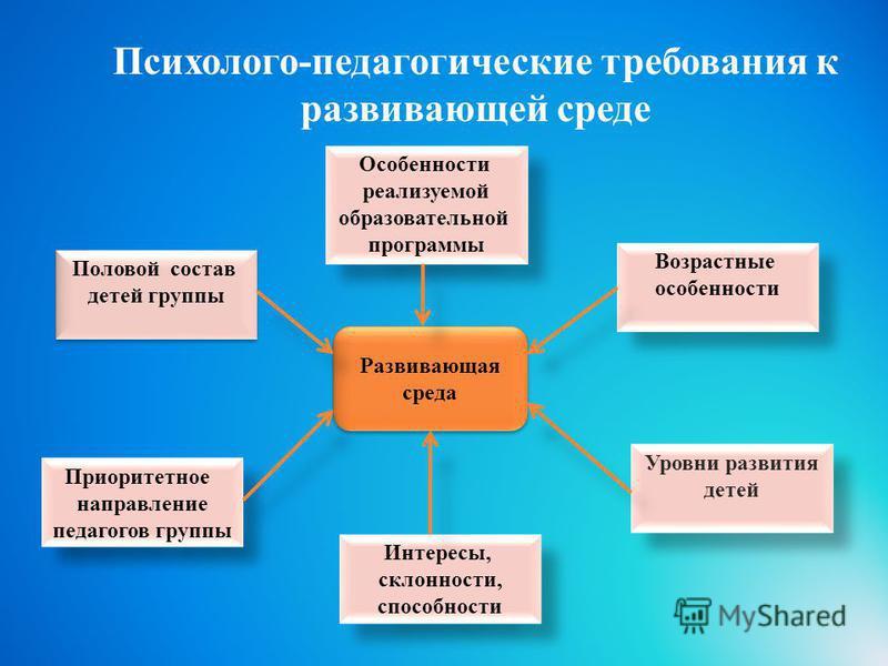 Психолого-педагогические требования к развивающей среде Возрастные особенности Возрастные особенности Особенности реализуемой образовательной программы Особенности реализуемой образовательной программы Интересы, склонности, способности Интересы, скло