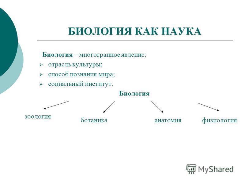 БИОЛОГИЯ КАК НАУКА Биология – многогранное явление: отрасль культуры; способ познания мира; социальный институт. Биология зоология ботаника анатомия физиология