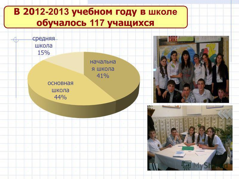 В 20 12-2013 учебном году в школе обучалось 117 учащихся