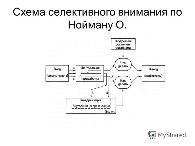 Схема селективного внимания по Нойману О.
