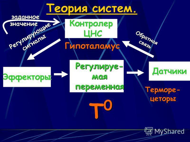 Эффекторы Датчики Теория систем. Контролер ЦНС ЦНС T0T0T0T0 Регулируе- мая переменная Обратнаясвязь Регулирующиесигналы Терморе-цеторызаданноезначение Гипоталамус
