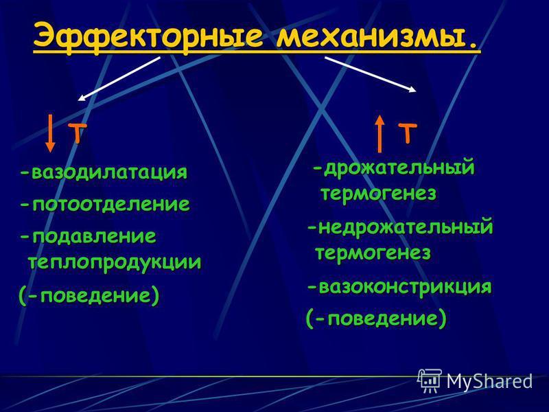 Эффекторные механизмы. ТТ-вазодилатация -потоотделение -подавление теплопродукции теплопродукции (-поведение) -дрожательный термогенез термогенез -не дрожательный -вазоконстрикция (-поведение)