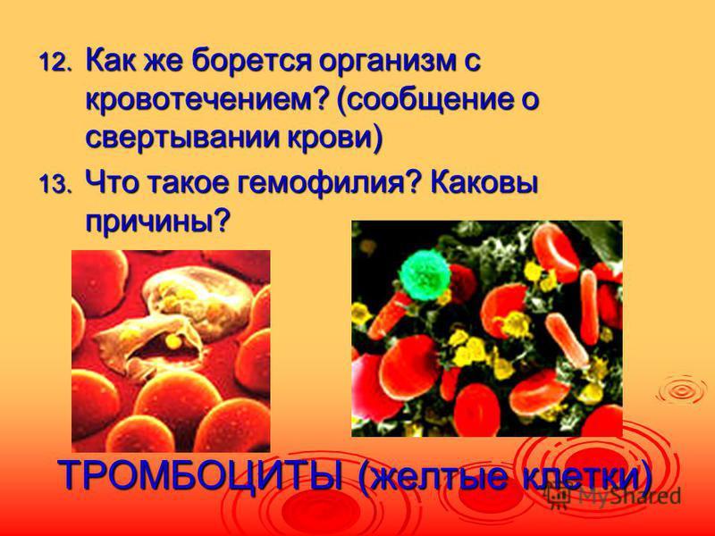 ТРОМБОЦИТЫ (желтые клетки) 12. Как же борется организм с кровотечением? (сообщение о свертывании крови) 13. Что такое гемофилия? Каковы причины?