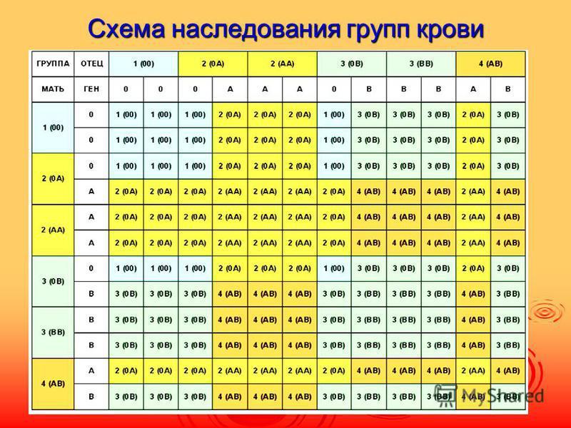 Схема наследования групп крови