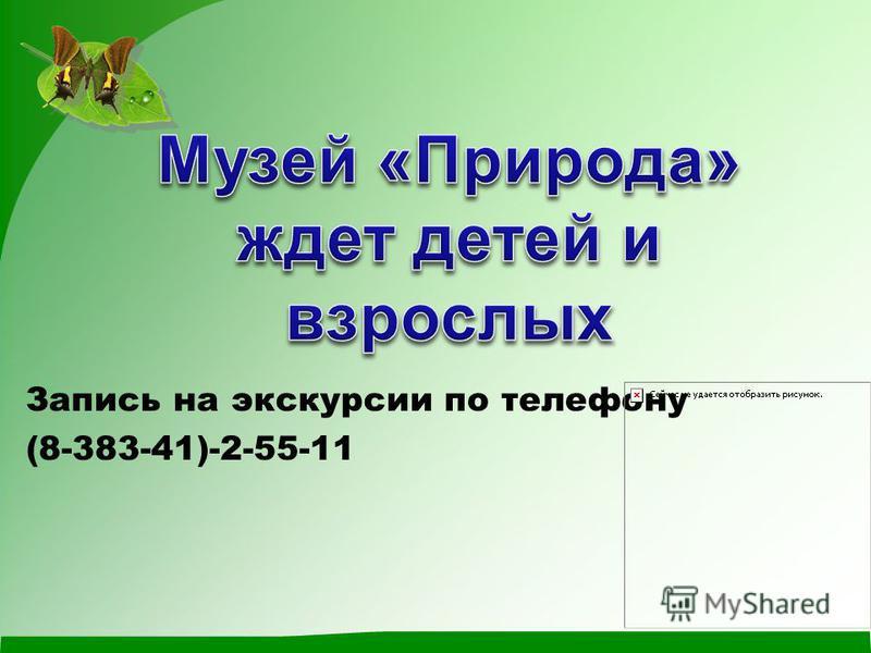 Запись на экскурсии по телефону (8-383-41)-2-55-11