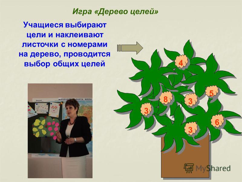 Учащиеся выбирают цели и наклеивают листочки с номерами на дерево, проводится выбор общих целей 3 3 8 8 4 4 3 3 3 3 6 6 5 5 Игра «Дерево целей»