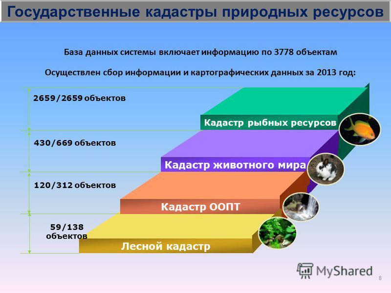 Лесной кадастр Кадастр рыбных ресурсов Кадастр животного мира Кадастр ООПТ Лесной кадастр 2659/2659 объектов 430/669 объектов 120/312 объектов 59/138 объектов Осуществлен сбор информации и картографических данных за 2013 год: База данных системы вклю