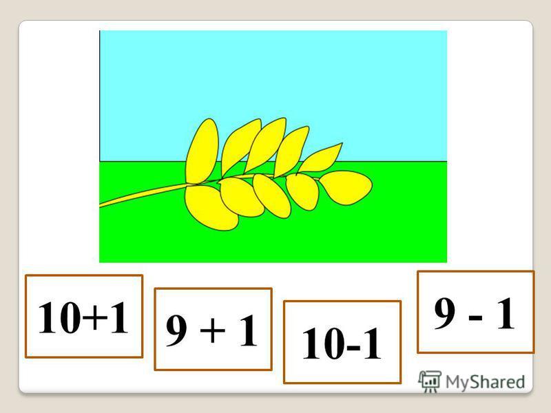 10+1 9 + 1 10-1 9 - 1