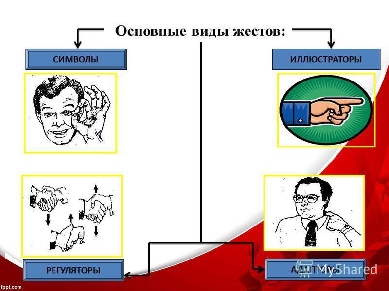 Основные виды жестов: СИМВОЛЫИЛЛЮСТРАТОРЫ РЕГУЛЯТОРЫ АДАПТОРЫ