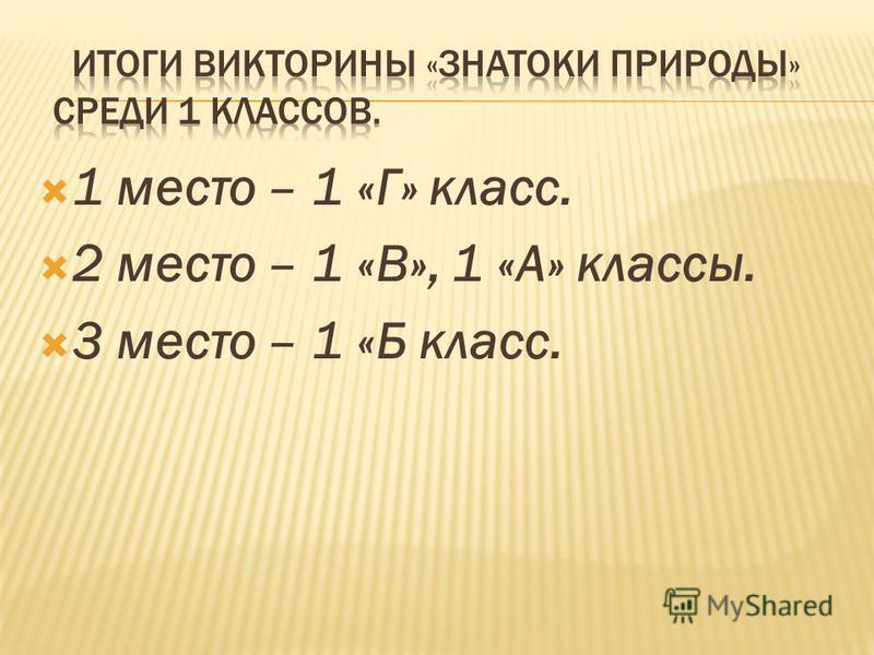 1 место – 1 «Г» класс. 2 место – 1 «В», 1 «А» классы. 3 место – 1 «Б класс.