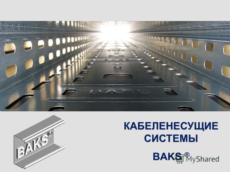 КАБЕЛЕНЕСУЩИЕ СИСТЕМЫ BAKS ®