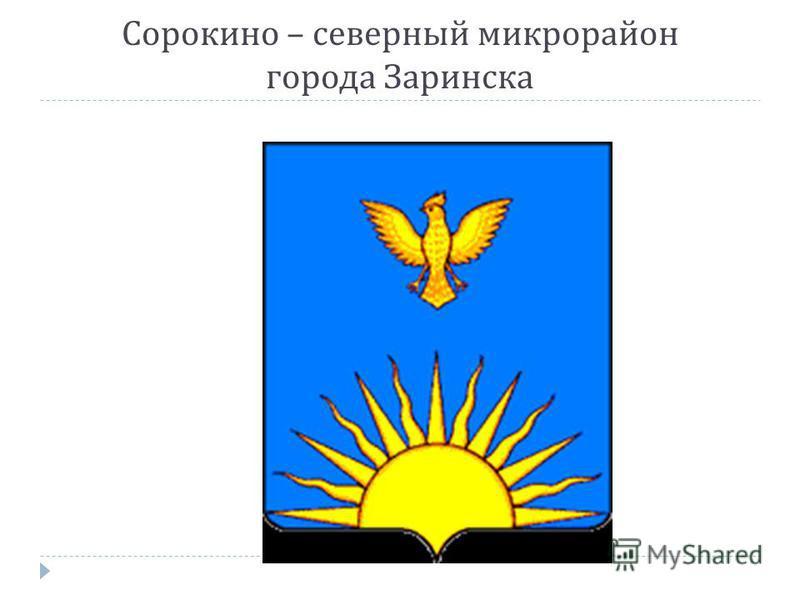 Сорокино – северный микрорайон города Заринска