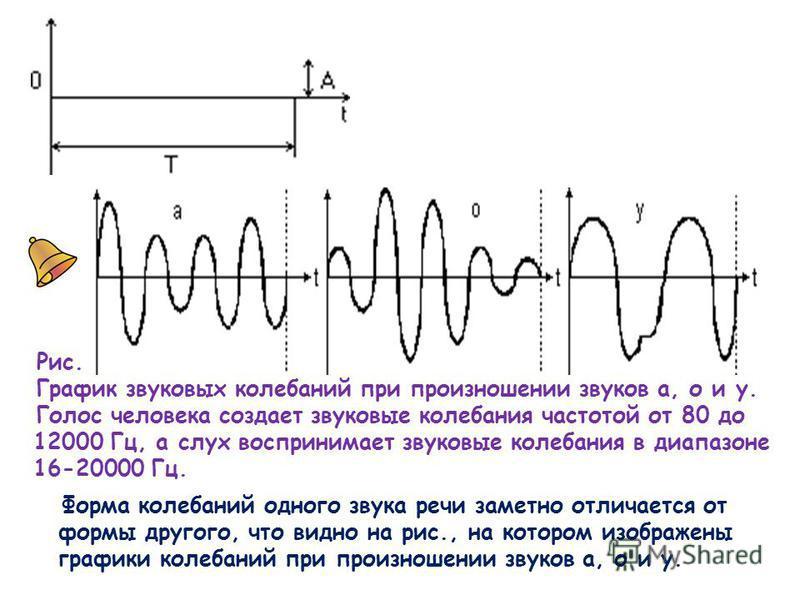 Рис. График звуковых колебаний при произношении звуков а, о и у. Голос человека создает звуковые колебания частотой от 80 до 12000 Гц, а слух воспринимает звуковые колебания в диапазоне 16-20000 Гц. Форма колебаний одного звука речи заметно отличаетс