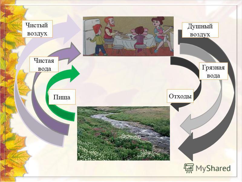 Чистый воздух Чистая вода Пища Отходы Грязная вода Душный воздух