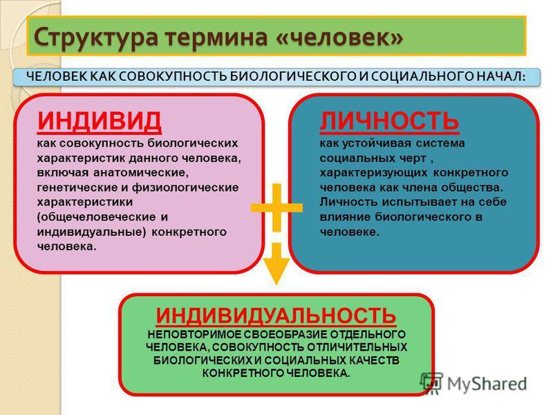Структура термина « человек » ИНДИВИД как совокупность биологических характеристик данного человека, включая анатомические, генетические и физиологические характеристики (общечеловеческие и индивидуальные) конкретного человека. ЛИЧНОСТЬ как устойчива