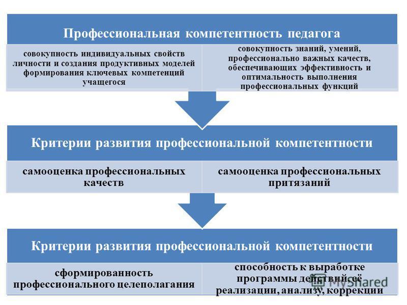 Критерии развития профессиональной компетентностьи сформированность профессионального целеполагания способность к выработке программы действий, её реализации, анализу, коррекции Критерии развития профессиональной компетентностьи самооценка профессион