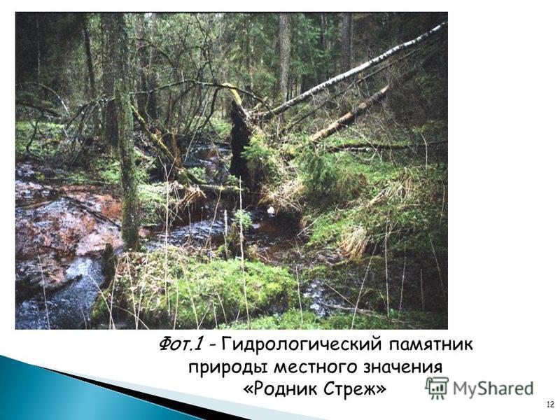 12 Фот.1 - Гидрологический памятник природы местного значения «Родник Стреж»